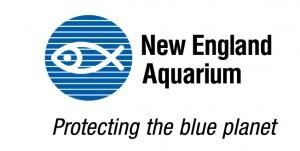 Logo-NEA-300x151-1
