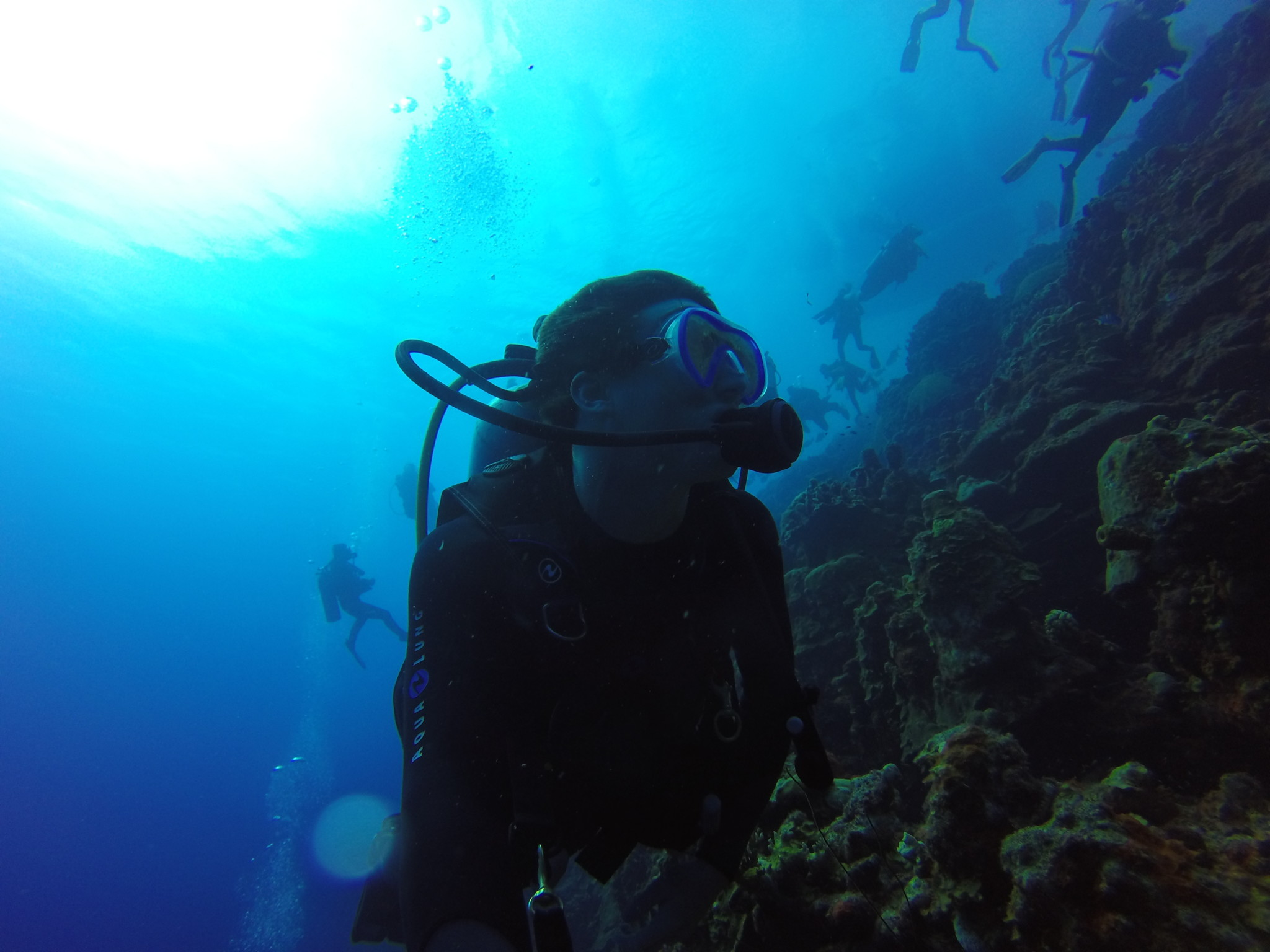James allan boston sea rovers summer internship diving bonaire xflitez Images